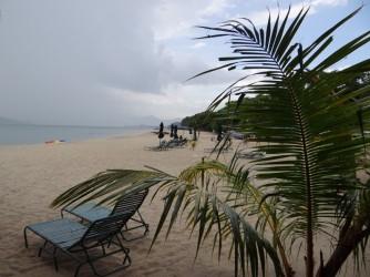 57 Beach loungers free