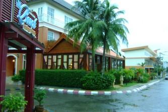 02 Rain and palm Phuket