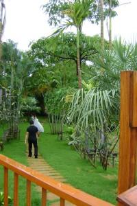 08 Jungle hotel