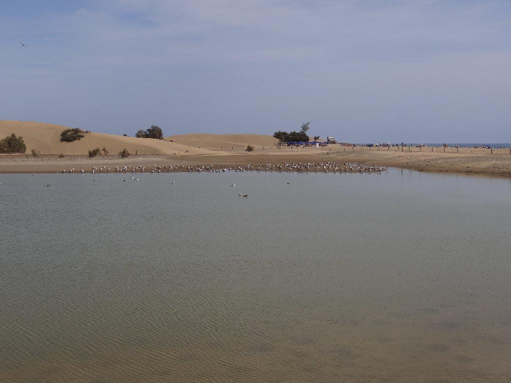 Maspalamos dune