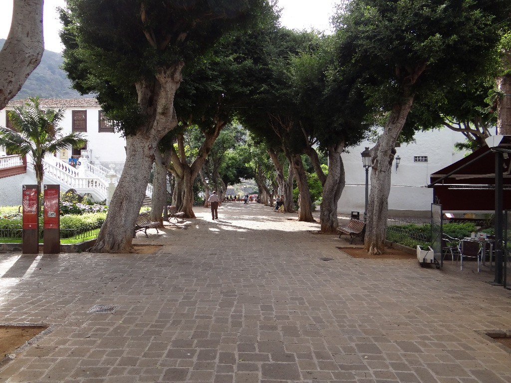 North Tenerife alley
