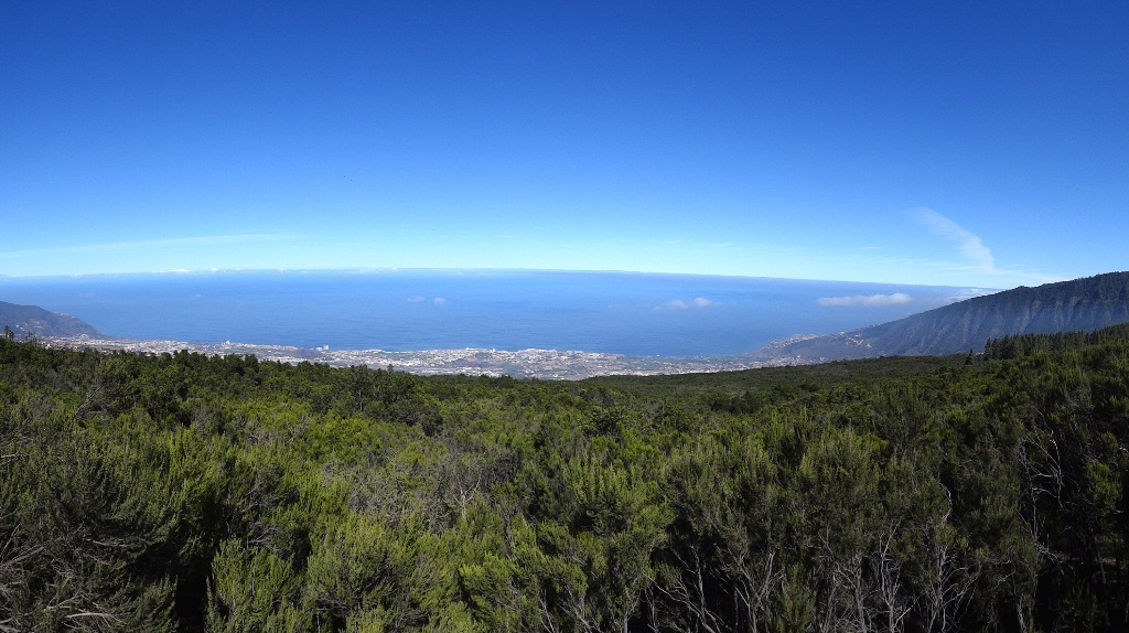 Tiede Road from North tenerife forest