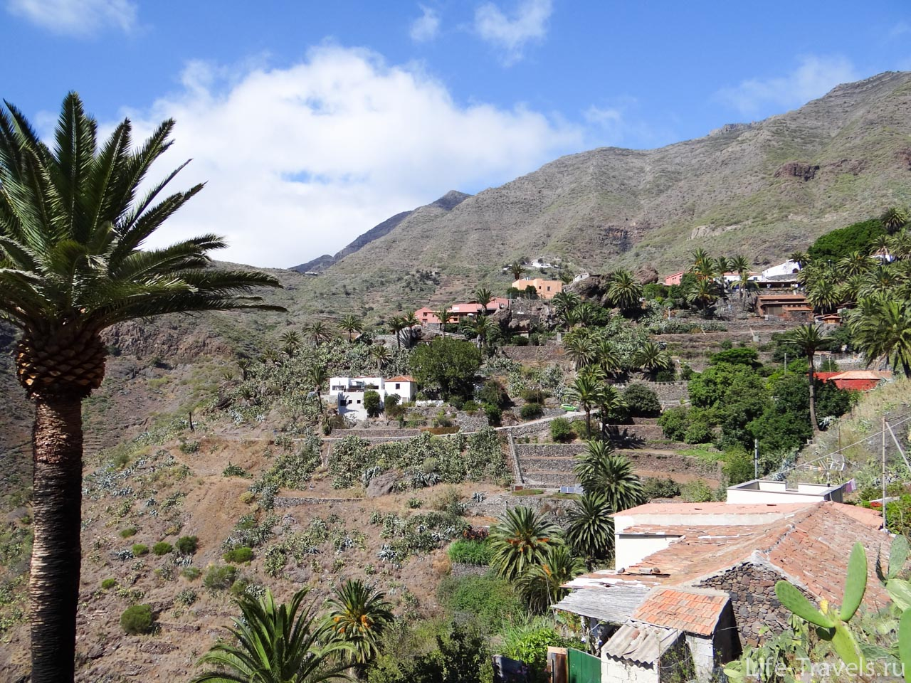 Houses in the village Masca